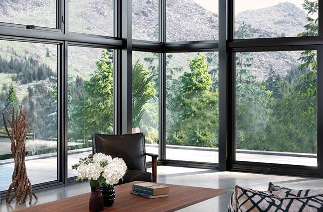 2019-window-trends-natural-workspaces